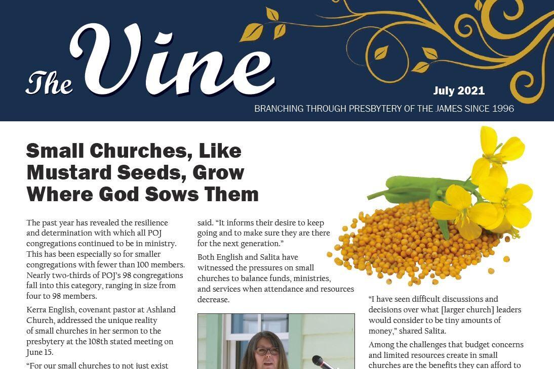Vine 202107 July_cover image